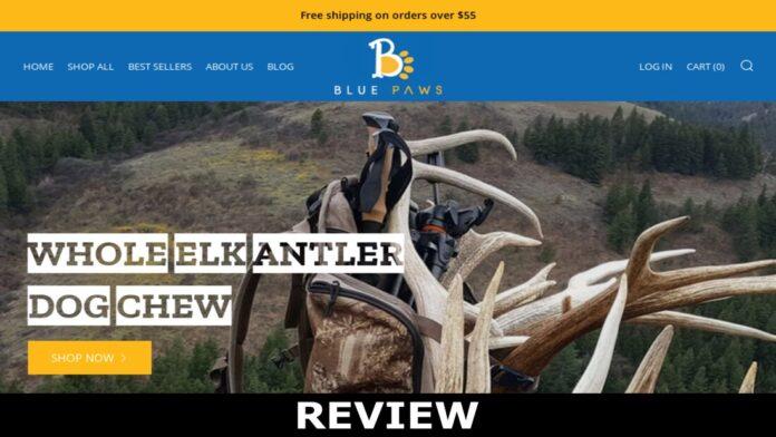 Bluepawspets.com Reviews